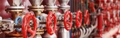 red-valves